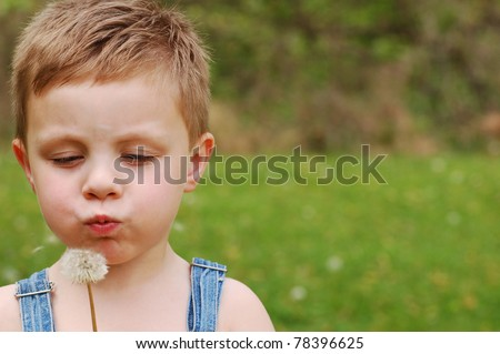 Little Country Boy Blows on Dandelion to make a Wish With Copy Space - stock photo