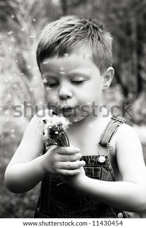 Little country boy making a wish - stock photo