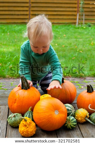 little cute boy playing with pumpkins
