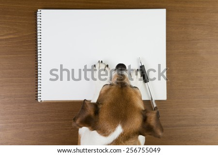 Little cute dog leaned over white sketch book. Empty space you can put your information - stock photo