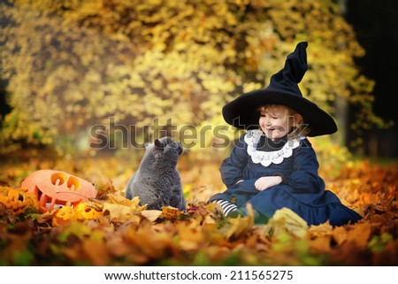 Little cute girl in black witch costume and a magic hat sitting among orange leaves with British blue cat in a sunny autumn day. Halloween. National holidays and traditions. Fairy tale. Funny kids.  - stock photo