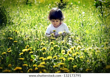 Little cute girl playing in the meadow with dandelions - stock photo