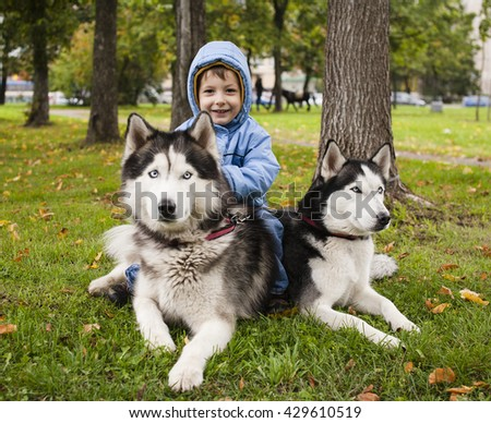 little cute girl playing with husky dog outside in green park