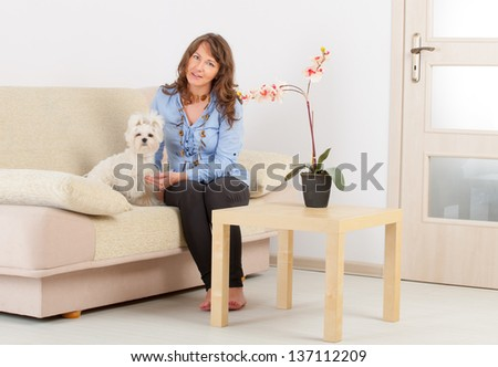 Little dog maltese sitting with his owner on the sofa in home - stock photo
