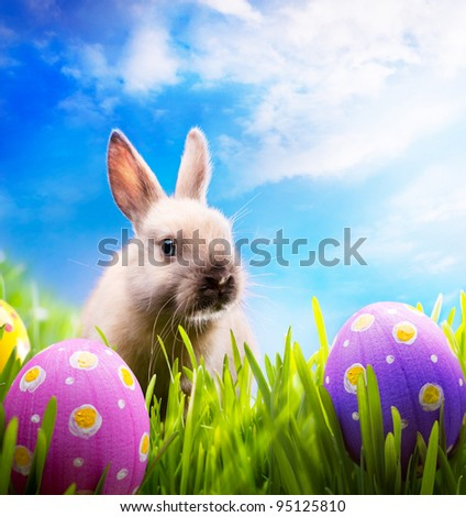 Little Easter bunny on spring green grass - stock photo