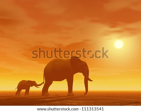 Little elephant holding its mum's queue by sunset - stock photo