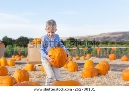 little excited kid  enjoying time at pumpkin patch holding big pumpkin in hands - stock photo