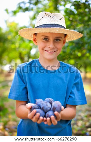 Little farmer with straw hat and a handful of plums - stock photo
