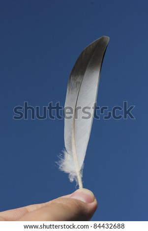 Little feather in hand on sky background - stock photo