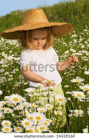 Little girl admiring the flowers on a daisy field in spring or summer time