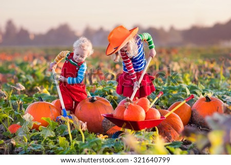 Little girl and boy picking pumpkins on Halloween pumpkin patch. Children playing in field of squash. Kids pick ripe vegetables on a farm in Thanksgiving holiday season. Family having fun in autumn. - stock photo