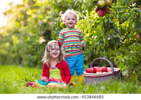 Little girl and boy playing in apple tree orchard.