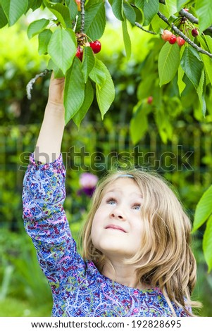 little girl and cherry tree in a garden - stock photo