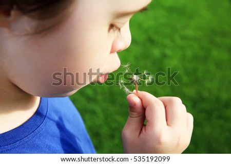 Little girl blowing dandelion