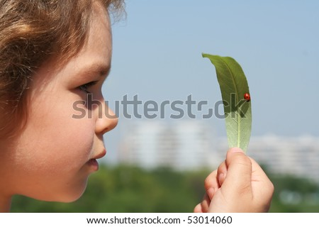 Little girl considers a leaf on which the ladybird sits - stock photo