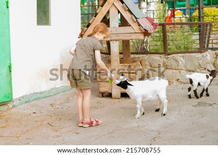Little girl feeding the goat at the zoo