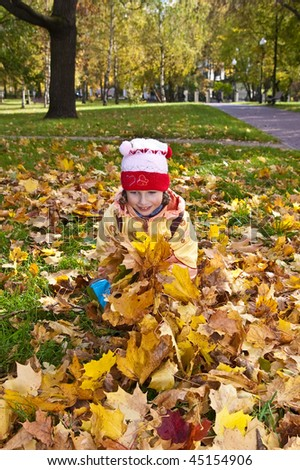 little girl gathering autumn leaves on sunny day