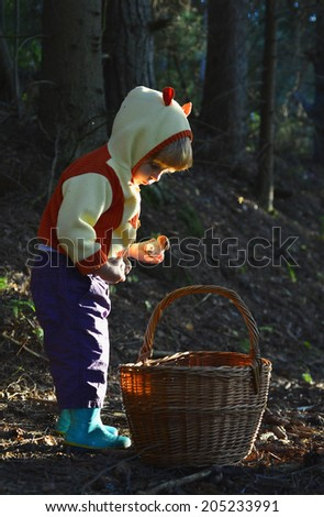 Little girl  gathers mushrooms in the forest on summer day
