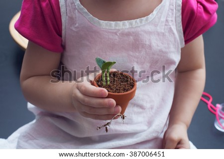 Little girl holding pot with small plant in her hand