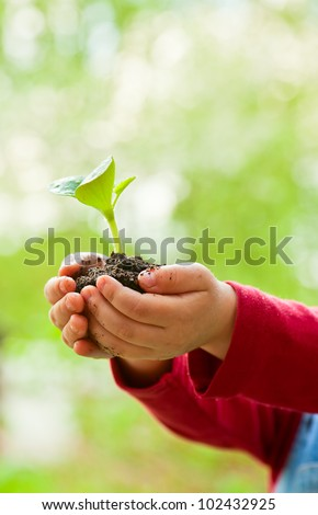 Little girl holding seeding with ground - stock photo