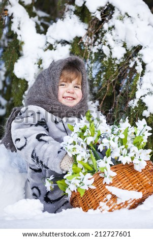 little girl in a down scarf, a fur coat and valenoks bears a big basket with snowdrops in the winter wood - stock photo
