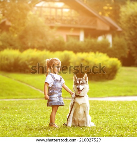 little girl in the park their home with a dog Husky - stock photo