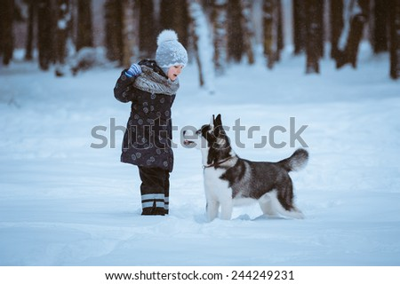 little girl in the park with a dog Husky, winter time - stock photo