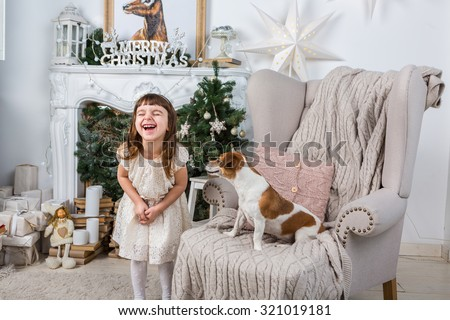 Little girl laughs joyfully laughing, dog, surprised and stares at her. Merry Christmas and Happy New Year interior. A series of photos - stock photo