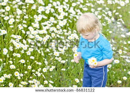 little girl on summer meadow in blossom