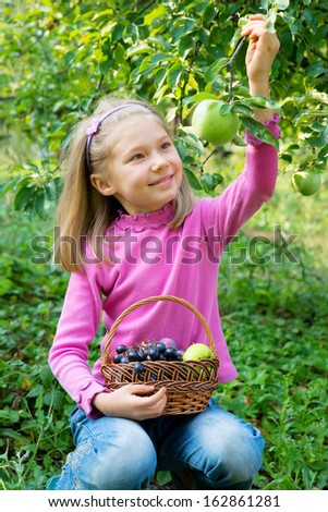 Little girl picking some green apples - stock photo