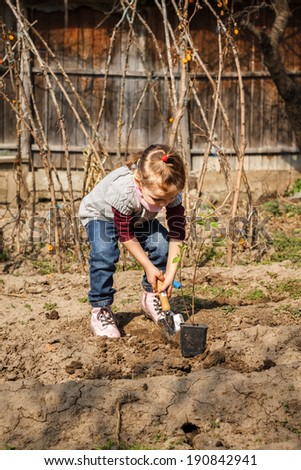 Little girl planting a tree in a garden