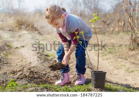 Little girl planting almond tree in a garden - stock photo