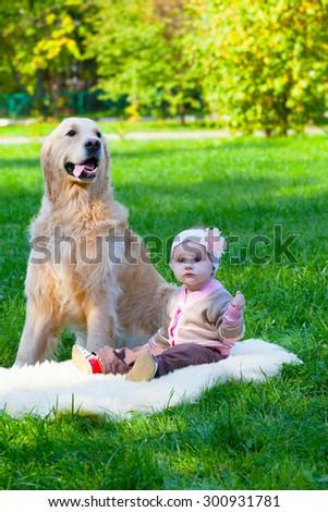 little girl sits near a big dog of a pooda golden - a retriever - stock photo
