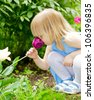 Little girl smelling red tulip in a garden - stock photo
