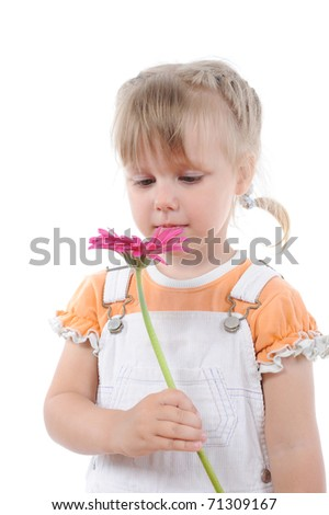 Little girl sniffs a flower. Isolated on white background