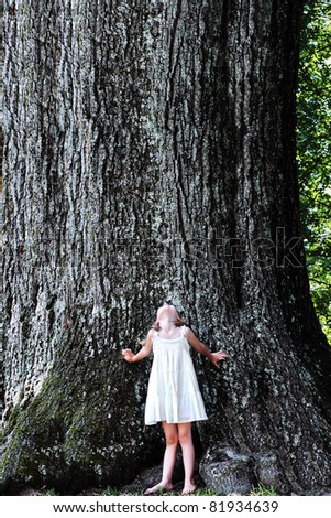 Little girl stands at the base of a very large oak tree and looks up. - stock photo