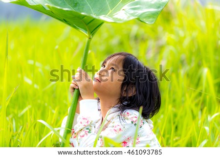 Little Girl Under The Taro Leaf