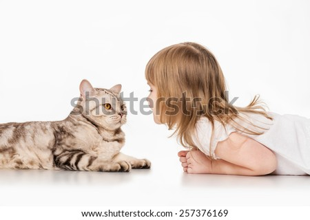 Little girl with a British cat, on a gray background - stock photo