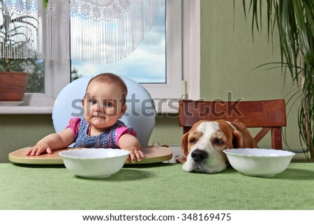 little girl with a dog waiting for dinner - stock photo