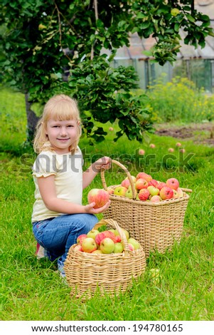 Little girl with basket full of apples in the garden