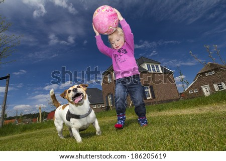 Little girl with blond hair, blue eyes and pink sweater, plays ball with a Jack Russel. - stock photo