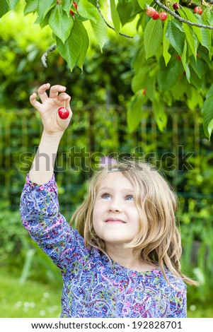 little girl with cherry in the hand - stock photo