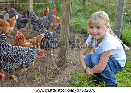 little girl with farm chickens - stock photo