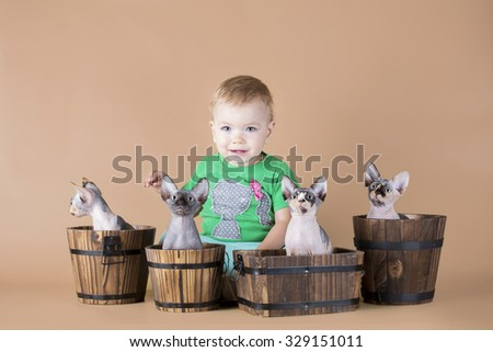 Little girl with four hairless kitten sitting in pots (isolated on beige) - stock photo