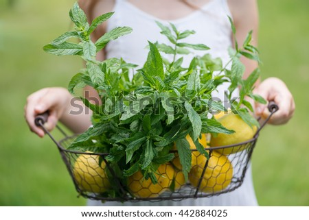 Little girl with lemon and mint