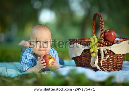 Little happy boy  at the picnic - stock photo