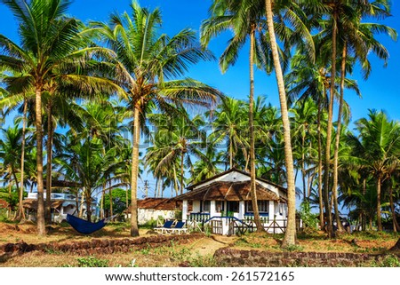 Little house surrounded by palm trees. India, Goa - stock photo