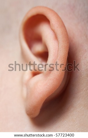 Little human child one listening silence ear macro - stock photo