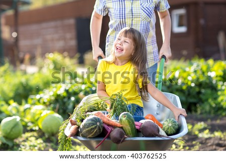 little kid girl inside wheelbarrow with vegetables in the garden - stock photo