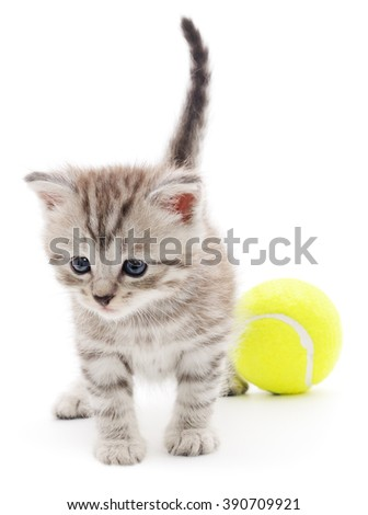 Little kitten playing with balls isolated on white